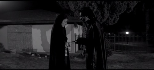 A Girl Walks Home Alone at Night--Arash and the Vampire