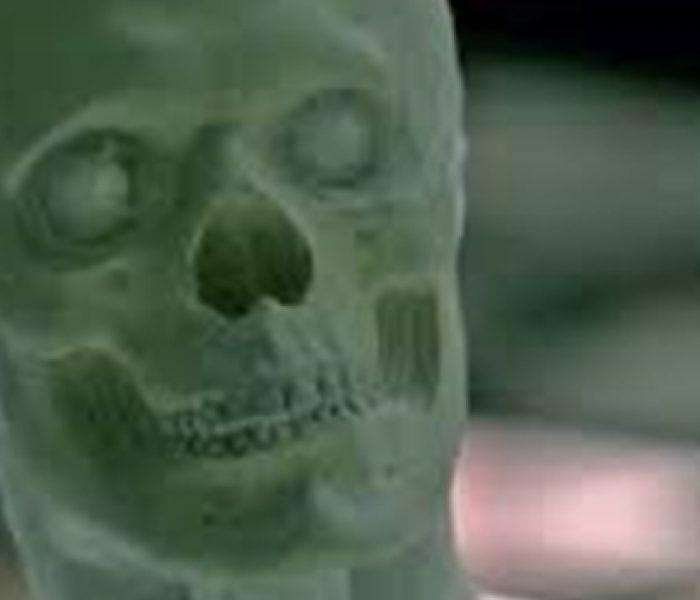 Westworld Back In Production After Actor Injured