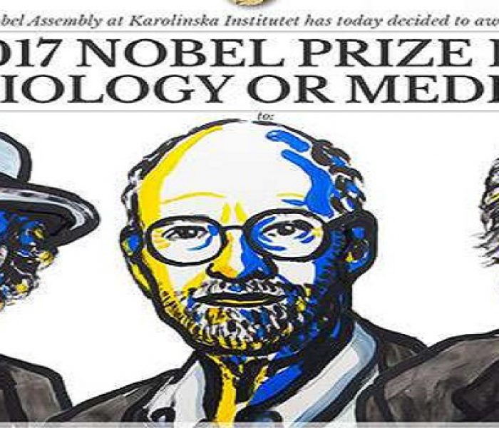 Nobel Prize in Physiology Goes to Circadian Rhythm Researchers